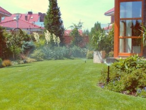 System nawadniający w ogrodzie